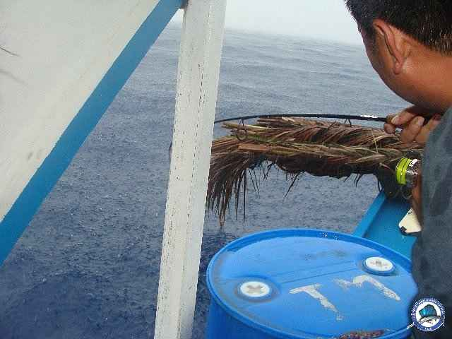 palawan Tuna Fishing 20.jpg