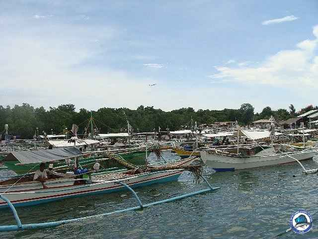 palawan Tuna Fishing 34.jpg