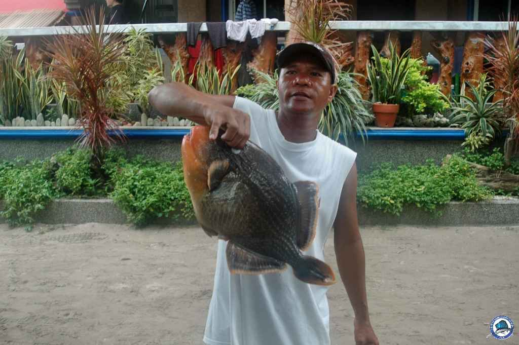batangas Ambil fishing 026.jpg