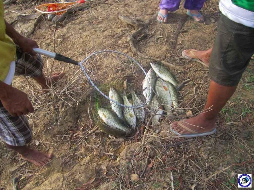 philippine largemouth bass fishing 2589.jpg