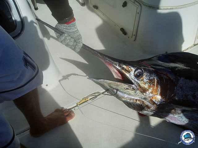 calayan island fishing 1010093.jpg