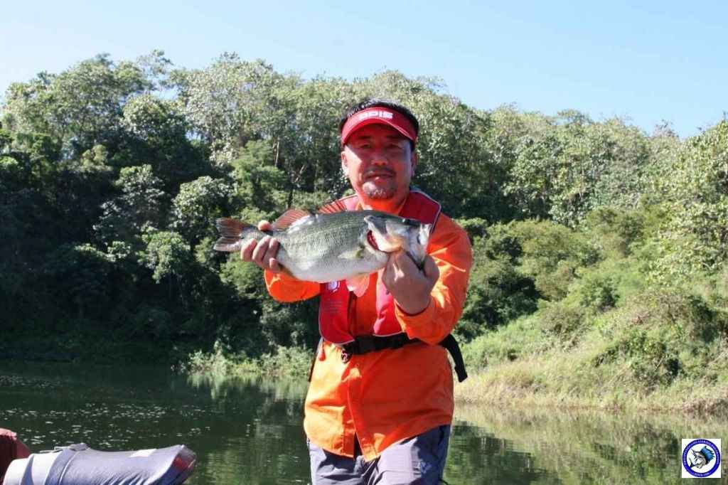 pantabangan Bass fishing7723.jpg