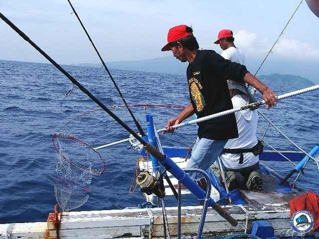 ambil batangas fishing_2297529_n.jpg
