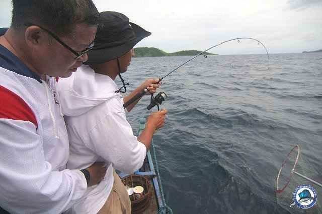 ambil batangas fishing_2297551_n.jpg