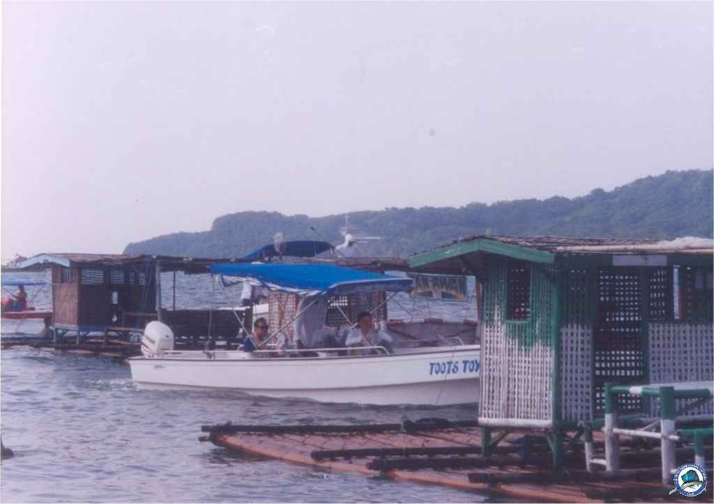 philippine bottom fishing e52.jpg