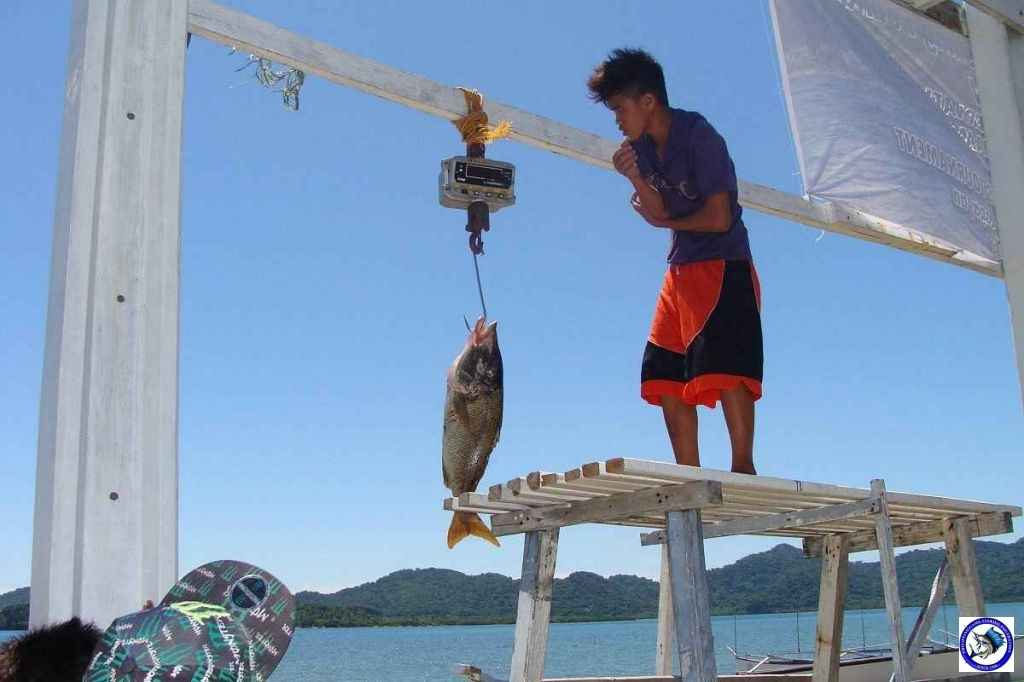 philippines big game fishing02618.jpg