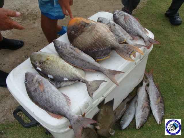 Ambil sportfishing-08.JPG