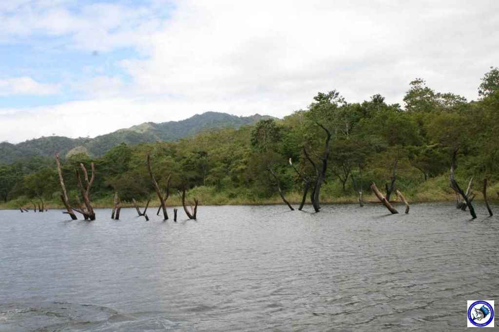pantabangan bass fishing 8092.jpg