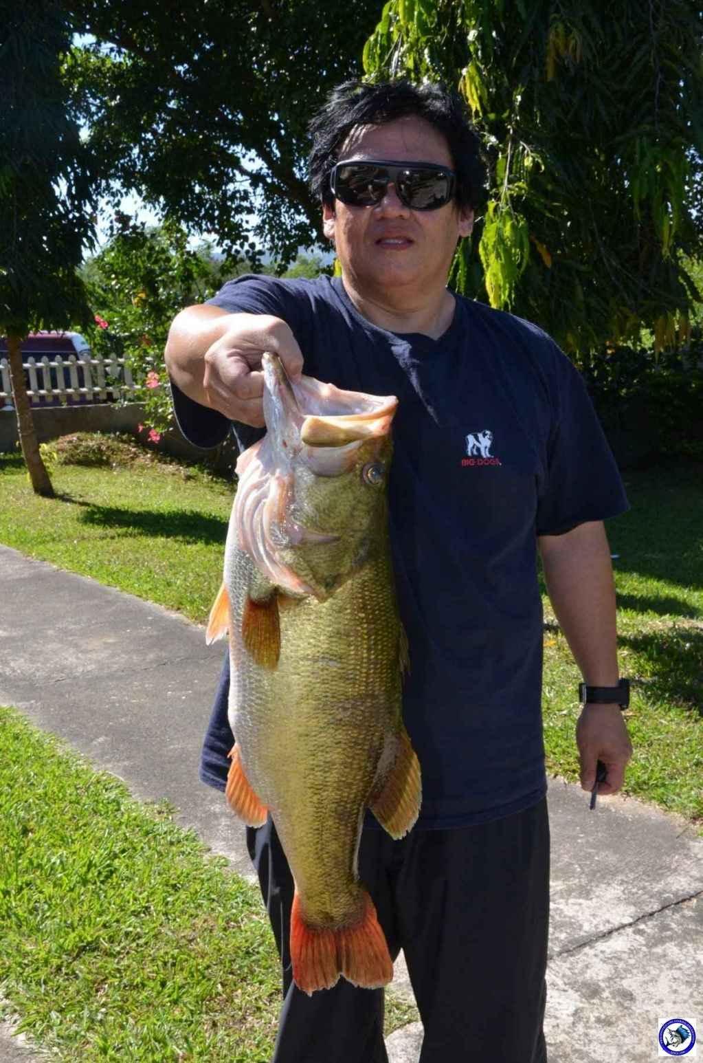 pantabangan bass fishing 8098.jpg
