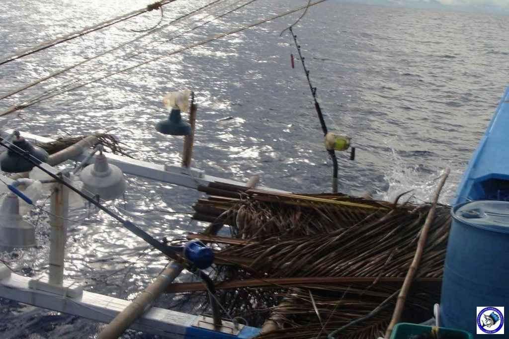 Palawan_Sport_Fishing_2013_22.JPG