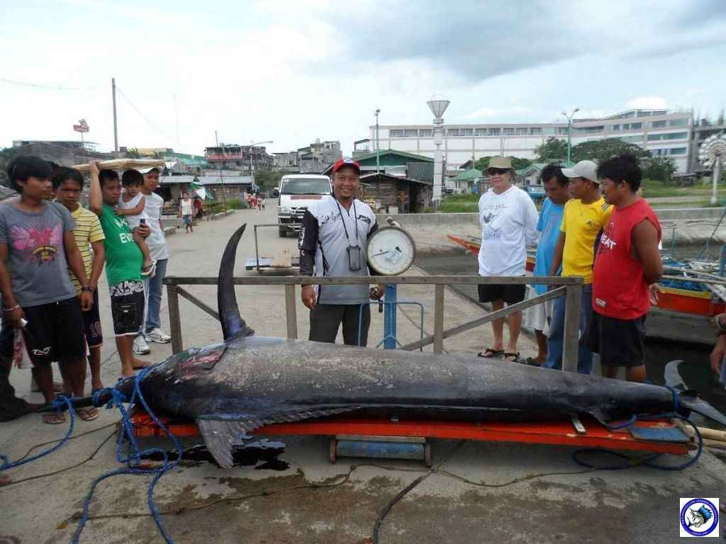 Philippine Sport Fishing 318kg Black Marlin21.JPG