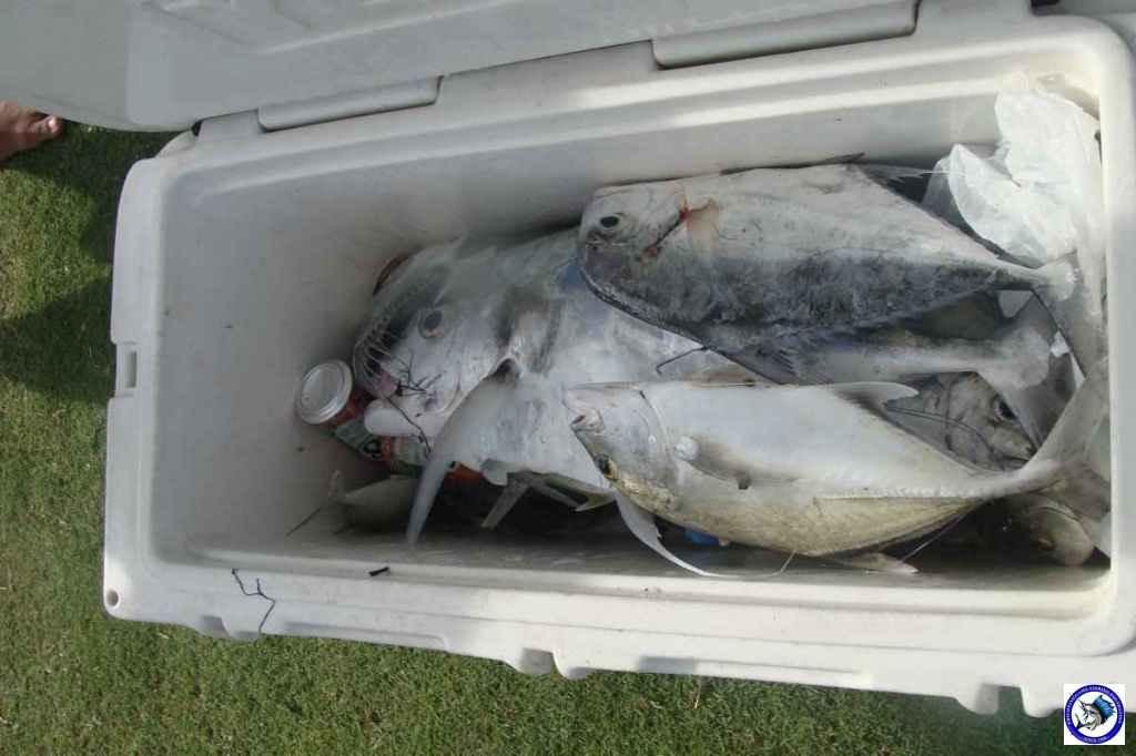 calatangan fishing 02719.jpg