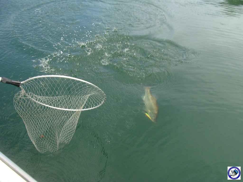 philippine bass fishing 01955.jpg