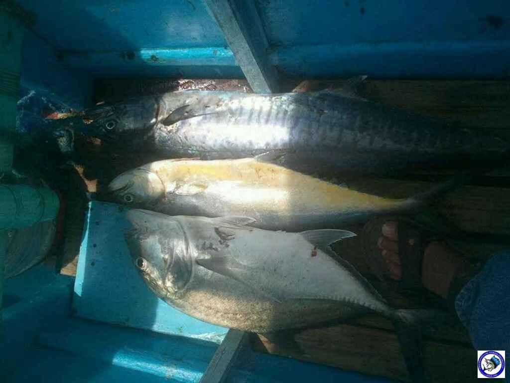 subic fishing A0780.jpg