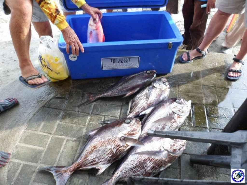 subic fishing A0783.jpg