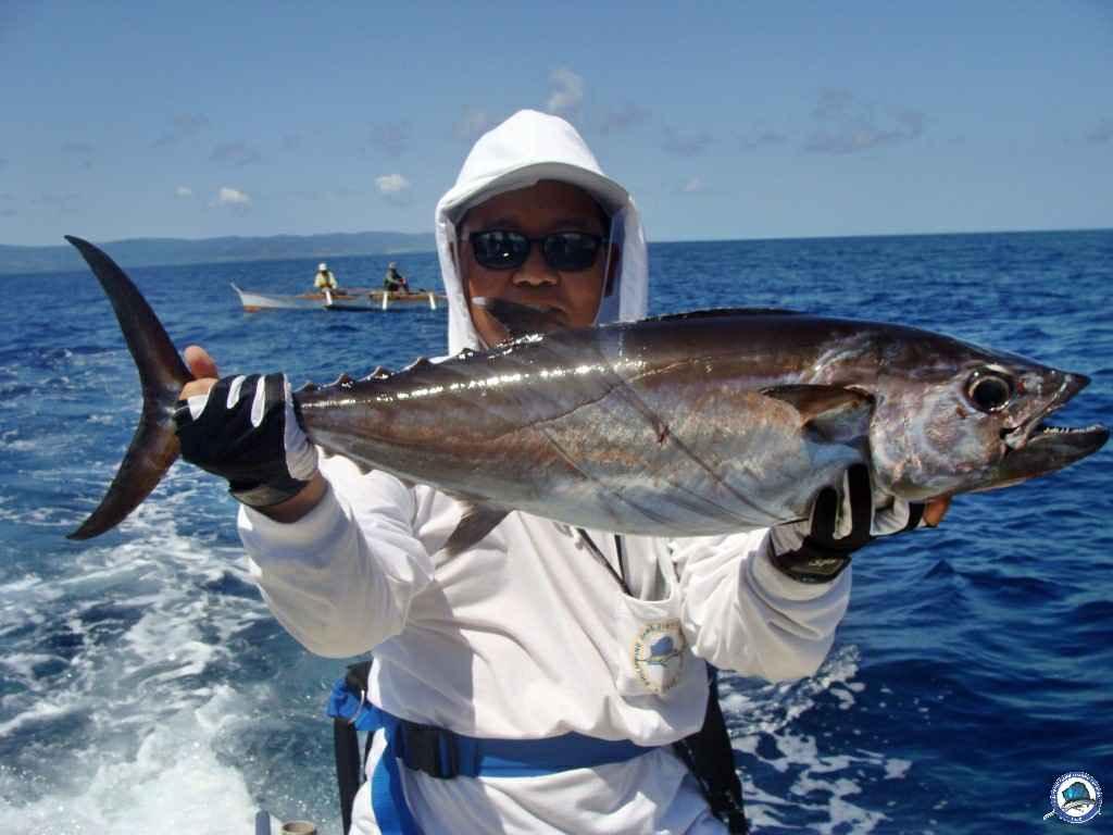philippine marlin trolling 5438.jpg