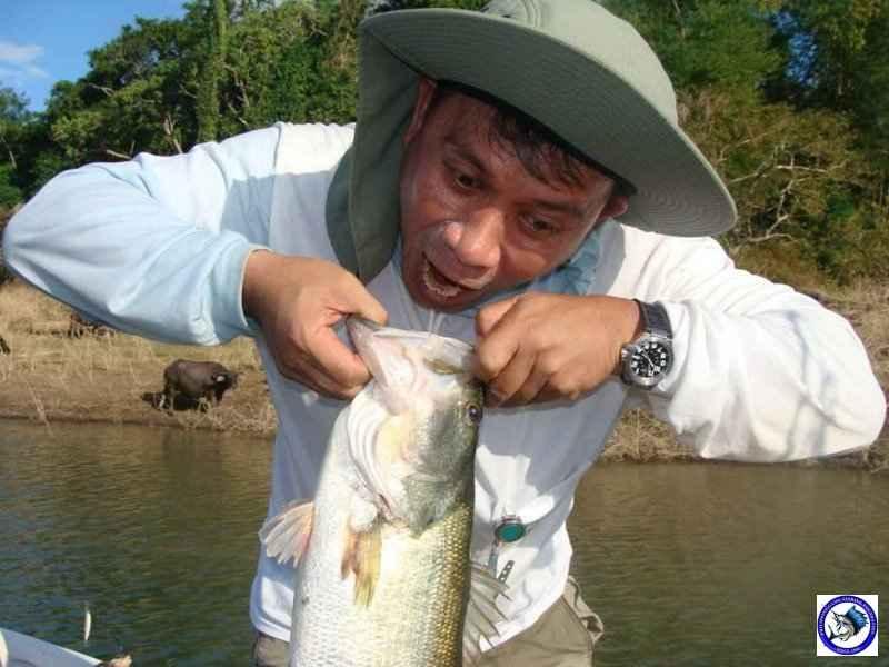 pantabangan bass fishing 02324.jpg