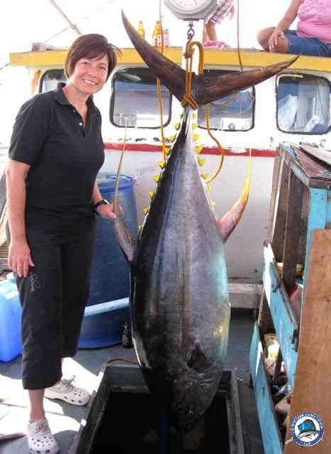 Tuna Yellowfin-tina1.jpg