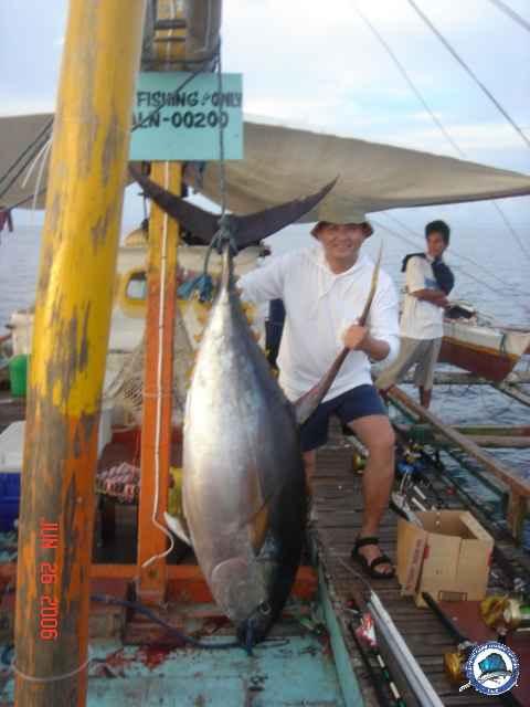 Tuna Yellowfin-tina3.JPG