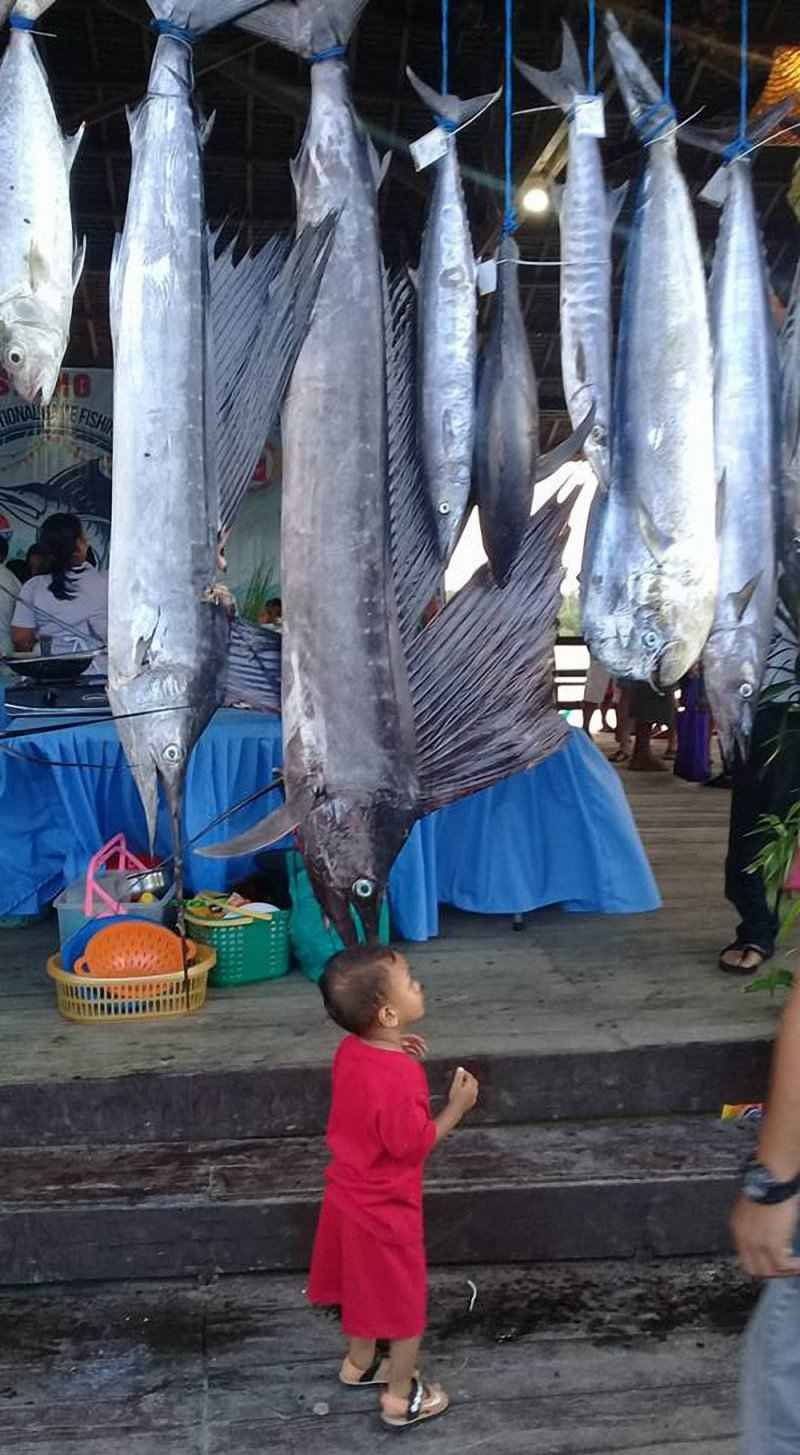 10-th-siargao-fishing-tournament22.jpg
