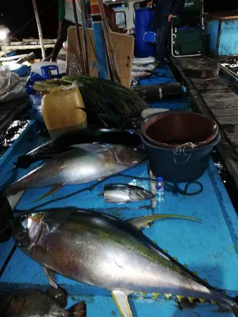 29-PGFF Tuna Tournament Oct. 27-31 2019 Sablayan.jpg